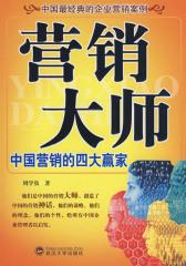 营销大师:中国营销的四大赢家