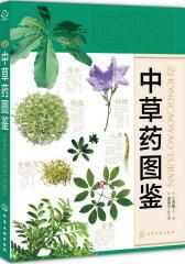 中草药图鉴(试读本)
