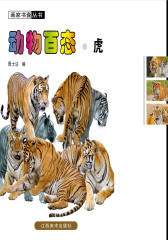 动物百态:虎(仅适用PC阅读)