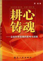 耕心铸魂:企业科学发展思考与实践