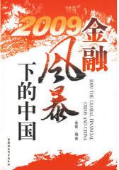 2009 金融风暴下的中国(试读本)