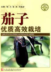 茄子优质高效栽培