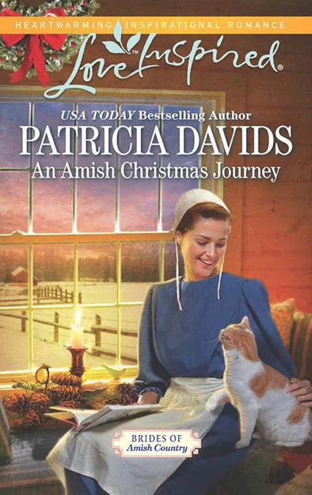 An Amish Christmas Journey (Mills & Boon Love Inspired) (Brides of Amish Country