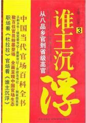 谁主沉浮 3(试读本)