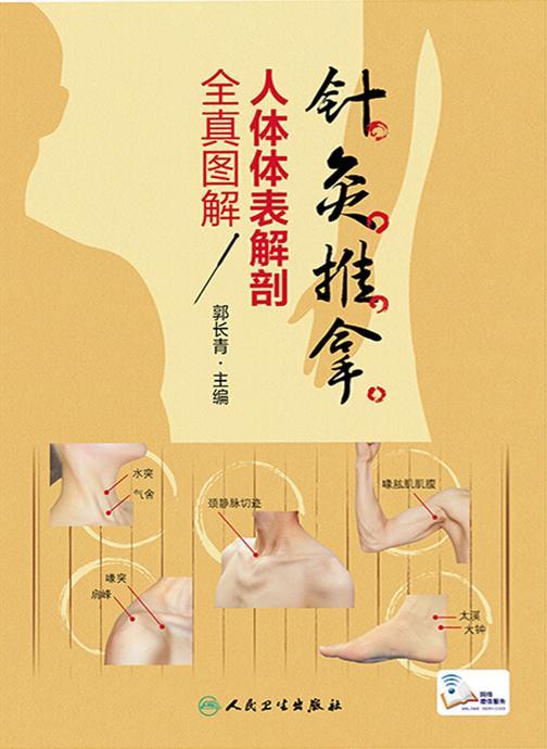针灸推拿人体体表解剖全真图解
