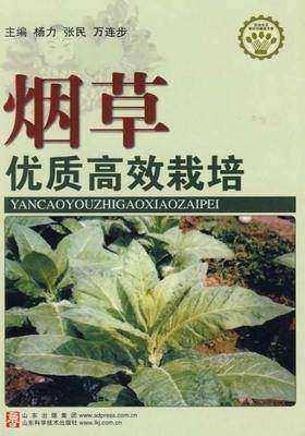 烟草优质高效栽培