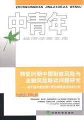 转轨时期中国财政风险与金融风险联动问题研究