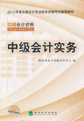 2013年全国会计专业技术资格考试辅导教材:中级会计实务(仅适用PC阅读)