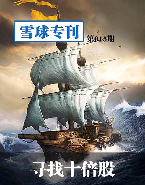 雪球专刊015——寻找十倍股(电子杂志)