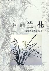 影-画兰花(试读本)