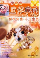 立体串珠:时尚雅致·生活饰品(修订本)