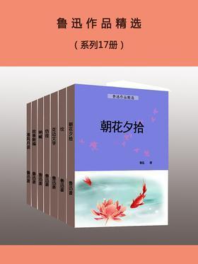 鲁迅作品精选(系列17册)