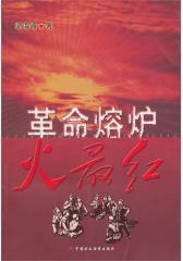 革命熔炉火 红(试读本)