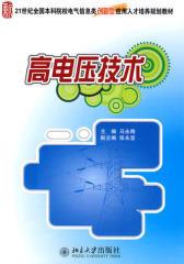 高电压技术(仅适用PC阅读)
