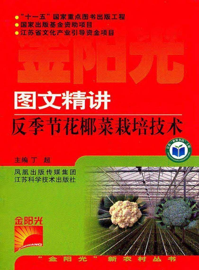 图文精讲反季节花椰菜栽培技术