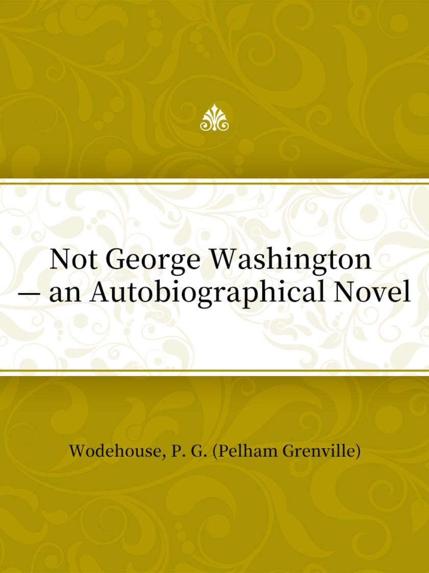 Not George Washington — an Autobiographical Novel