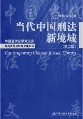 当代中国刑法新境域(第二版)