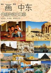 画中东:行走中东13国