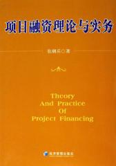 项目融资理论与实务
