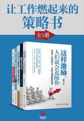 让工作燃起来的策略书(5册)