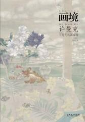 画境-许曼克工笔花鸟画探微(第2版)