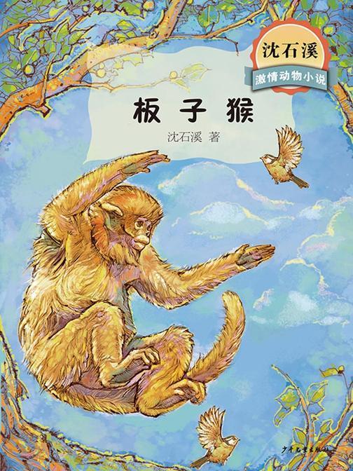 沈石溪激情动物小说  板子猴