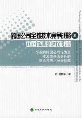 跨国公司全球技术竞争战略及中国企业的应对战略——一个新的跨国公司行为及技术竞争力提升的理论与应用分析框架