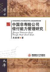 中国非寿险公司偿付能力管理研究