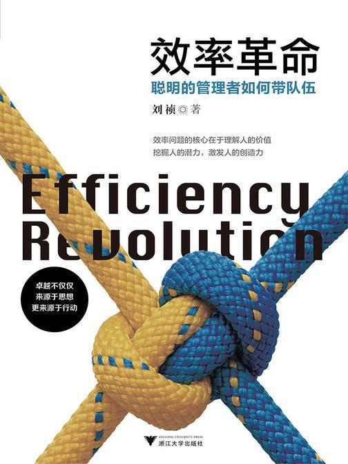效率革命:聪明的管理者如何带队伍