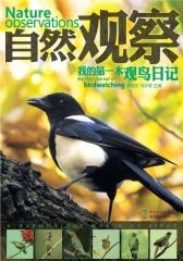 我的第一本观鸟日记