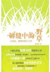 罅缝中的野草——大专生,年薪照样三十万(试读本)