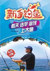 新手钓鱼 : 看天、选竿、做饵、上大鱼