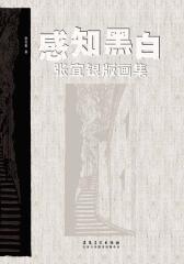 感知黑白:张宜银版画集