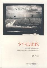 少年巴比伦——中国白领、文艺青年人手一册的工厂回忆录(试读本)