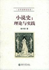 小说史:理论与实践