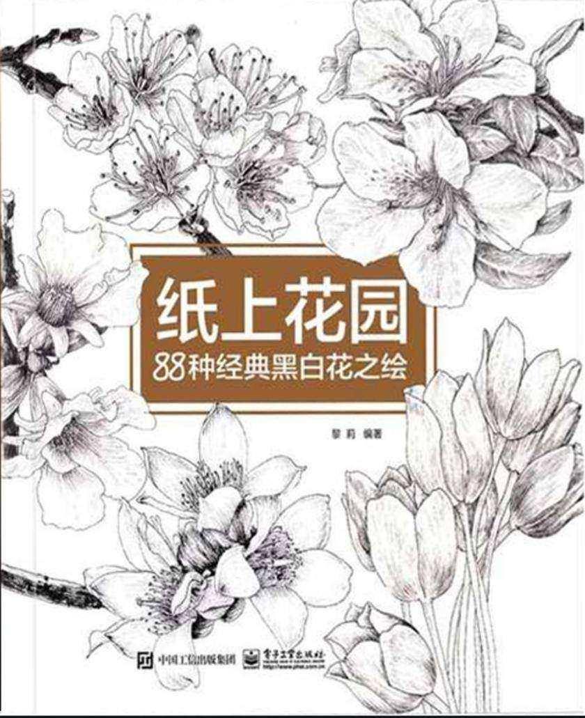 纸上花园88种经典黑白花之绘
