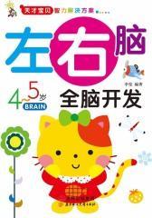 天才宝贝智力解决方案:左右脑全脑开发(4~5岁)