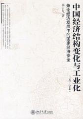 中国经济结构变化与工业化(1952—2004)(仅适用PC阅读)