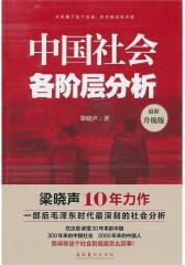 中国社会各阶层分析(试读本)