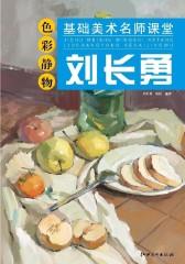 基础美术名师课堂——刘长勇色彩静物(仅适用PC阅读)