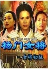 杨门女将初征(影视)