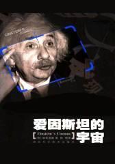 爱因斯坦的宇宙(超弦理论创始人之一加来道雄最经典的作品,关于爱因斯坦和相对论最通俗的读物)