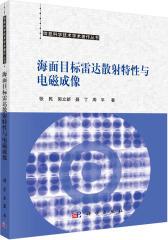 海面目标雷达散射特性与电磁成像(试读本)