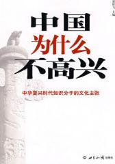 中国为什么不高兴(试读本)