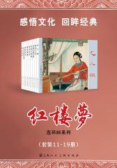 红楼梦11-19(套装共9册)