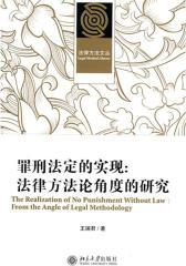罪刑法定的实现:法律方法论角度的研究