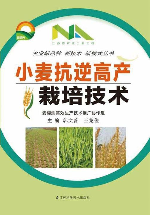 小麦抗逆高产栽培技术