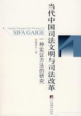 当代中国司法文明与司法改革