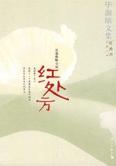红处方:灵魂救赎小说(试读本)