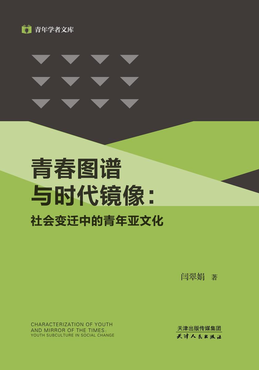 青春图谱与时代镜像:社会变迁中的青年亚文化